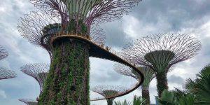 singapore-3243816_1280